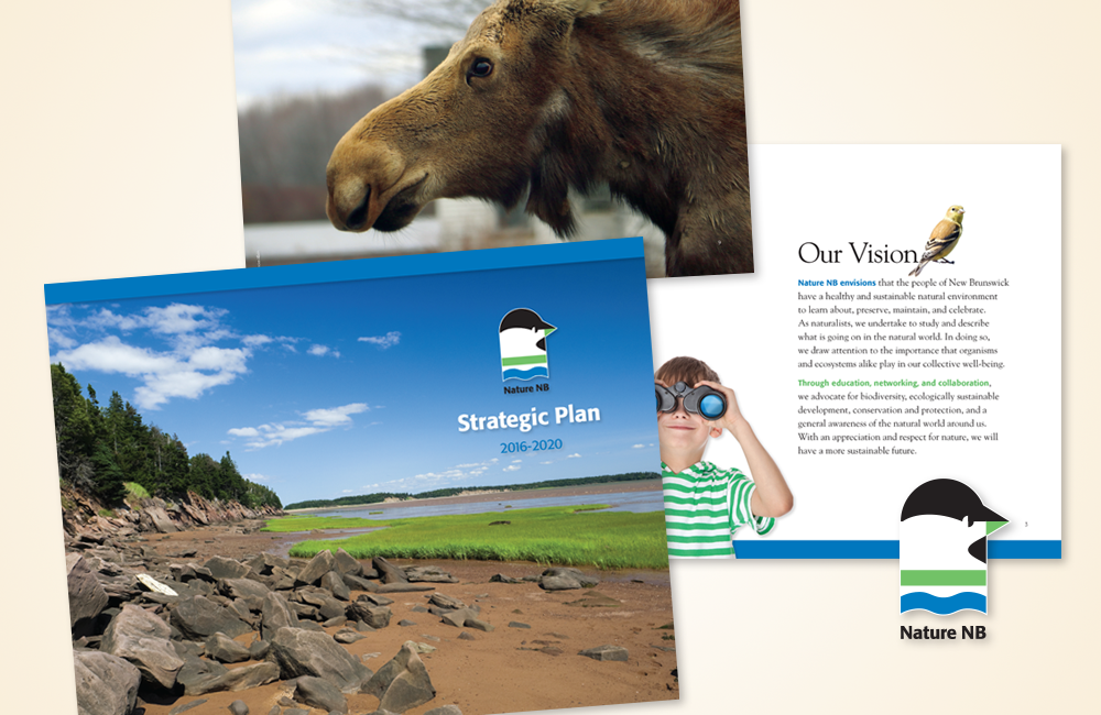 NatureNB Strategic Plan
